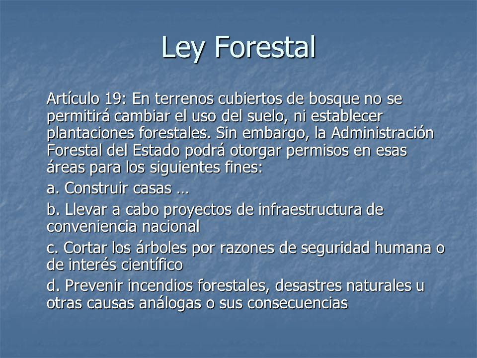 Ley Forestal Artículo 19: En terrenos cubiertos de bosque no se permitirá cambiar el uso del suelo, ni establecer plantaciones forestales. Sin embargo