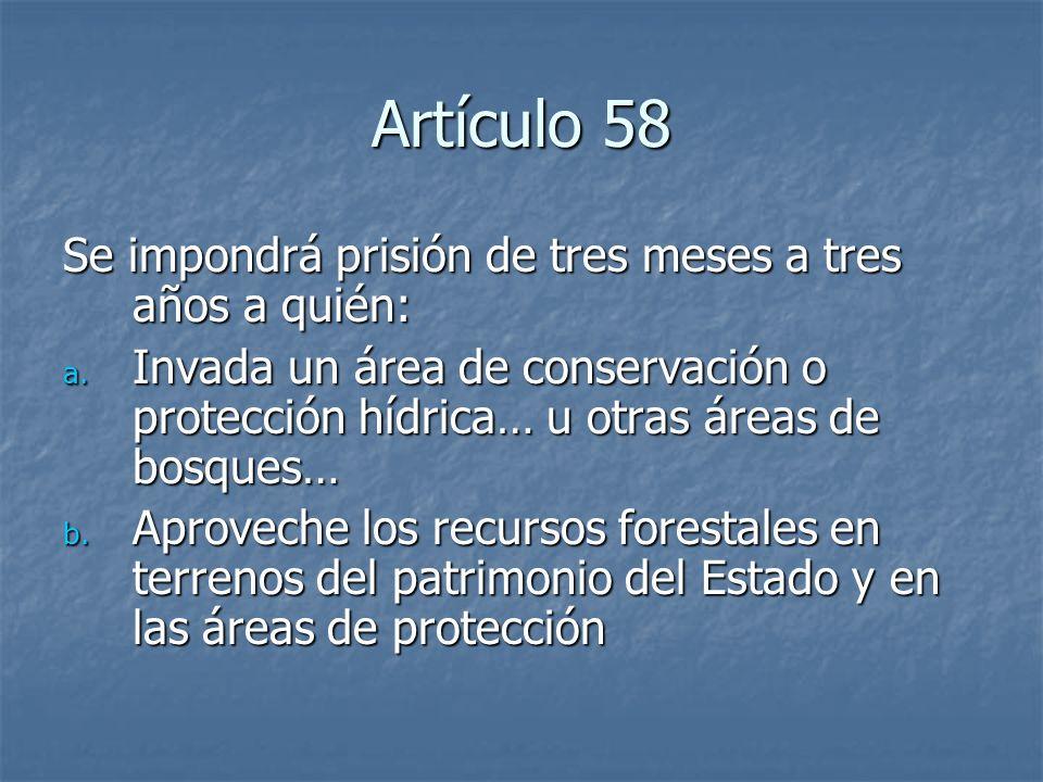 Artículo 58 Se impondrá prisión de tres meses a tres años a quién: a. Invada un área de conservación o protección hídrica… u otras áreas de bosques… b