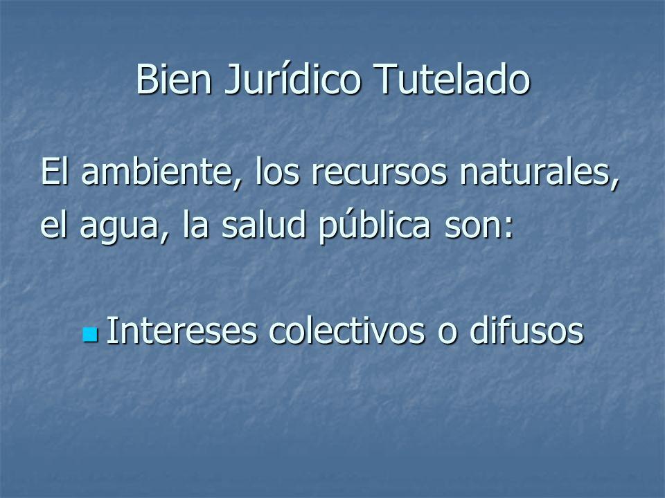 Bien Jurídico Tutelado El ambiente, los recursos naturales, el agua, la salud pública son: Intereses colectivos o difusos Intereses colectivos o difus