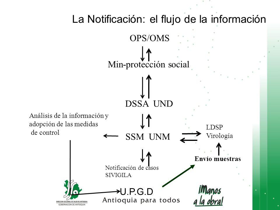 U.P.G.D SSM UNM LDSP Virología Notificación de casos SIVIGILA Envío muestras Análisis de la información y adopción de las medidas de control DSSA UND