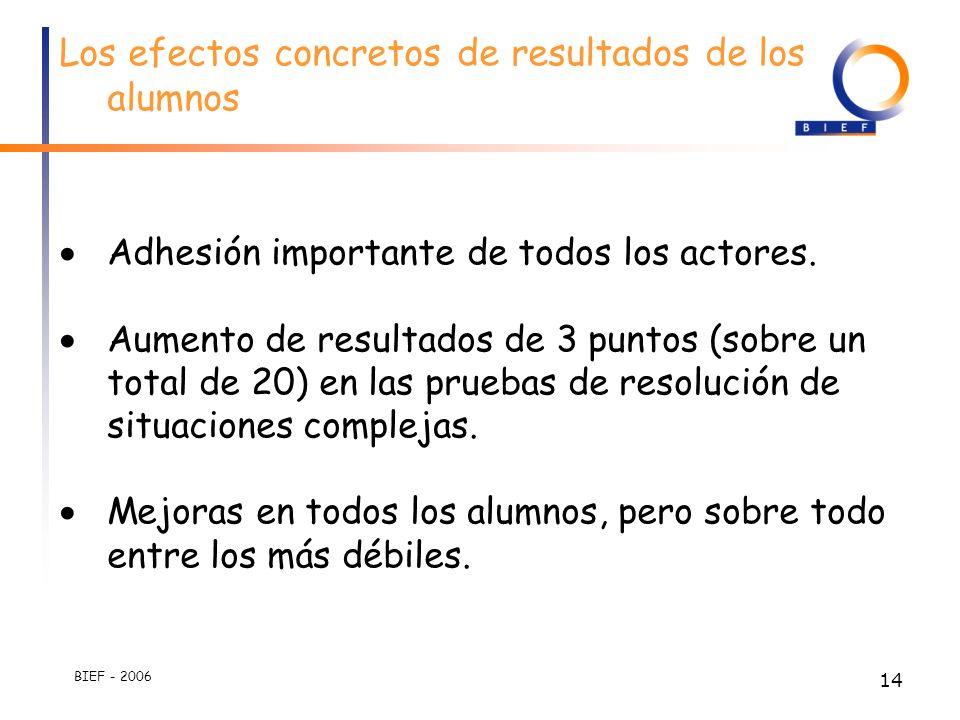BIEF - 2006 13 Las competencias son definidas como concretas y complejas a la vez.