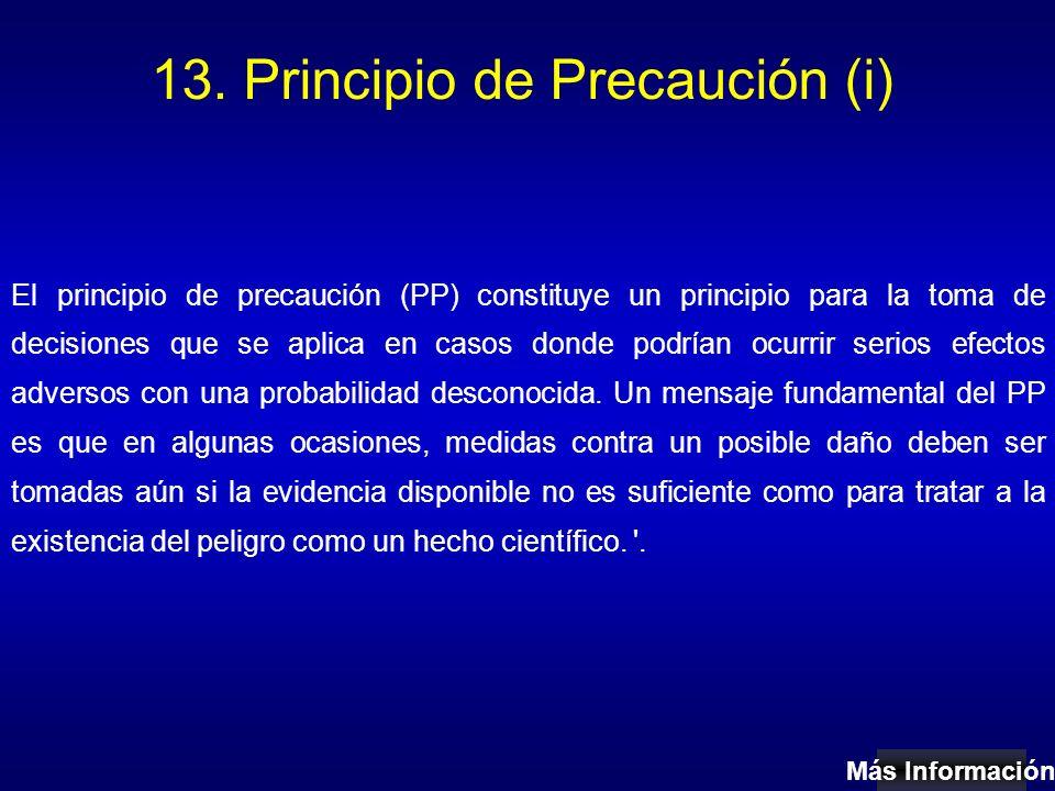 13. Principio de Precaución (i) El principio de precaución (PP) constituye un principio para la toma de decisiones que se aplica en casos donde podría