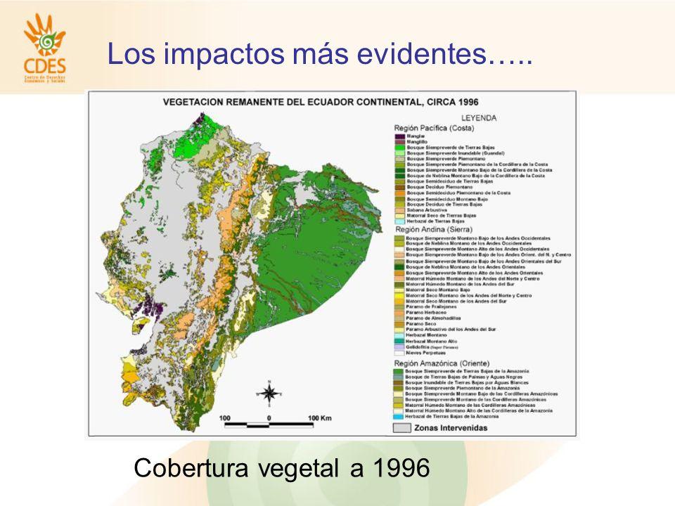 Los impactos más evidentes….. Cobertura vegetal a 1996