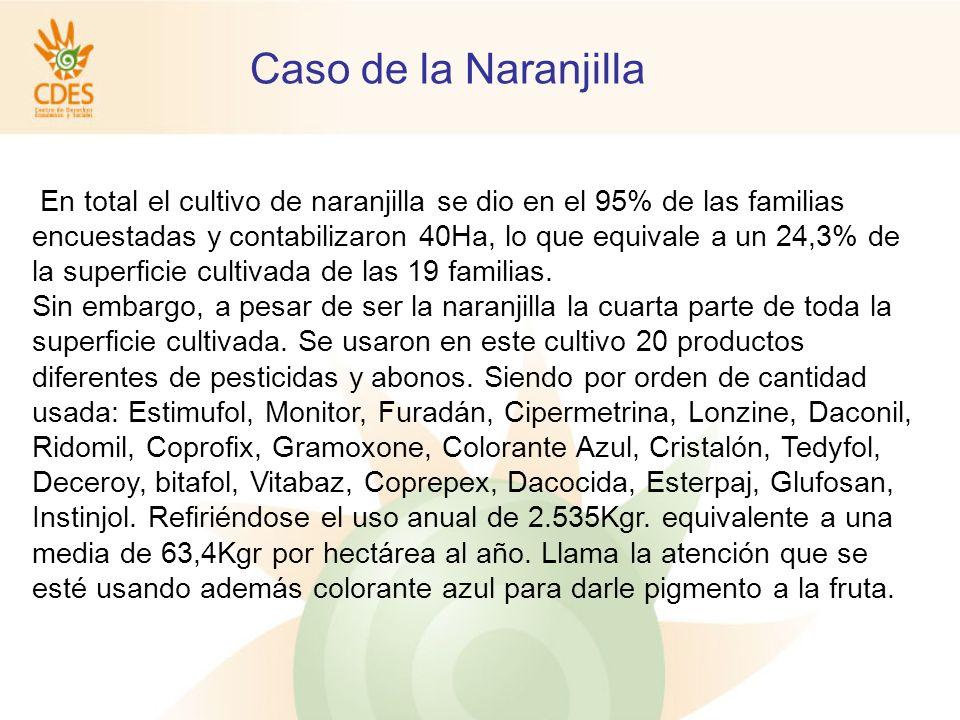 En total el cultivo de naranjilla se dio en el 95% de las familias encuestadas y contabilizaron 40Ha, lo que equivale a un 24,3% de la superficie cultivada de las 19 familias.
