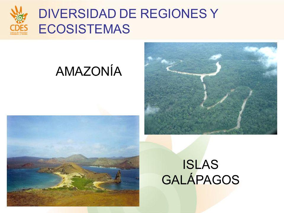 AMAZONÍA ISLAS GALÁPAGOS DIVERSIDAD DE REGIONES Y ECOSISTEMAS