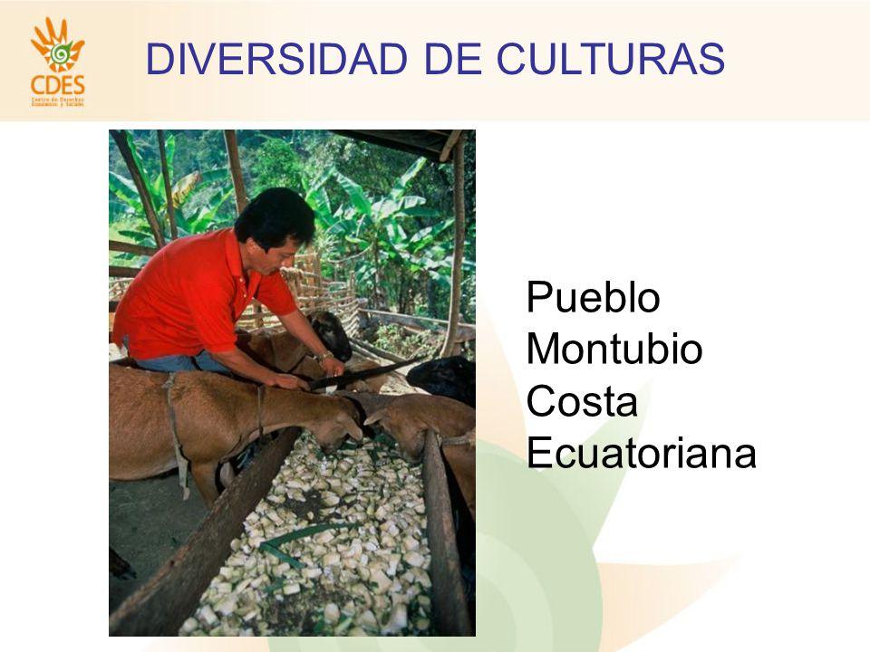 DIVERSIDAD DE CULTURAS Nacionalidad Kichwa Andina Pueblo Puruhá (Provincia de Chimborazo)