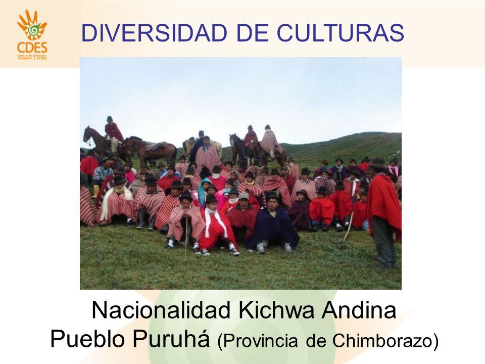 DIVERSIDAD DE CULTURAS Nacionalidad Waorani Amazonía Ecuatoriana