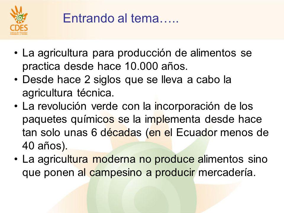 La agricultura para producción de alimentos se practica desde hace 10.000 años.