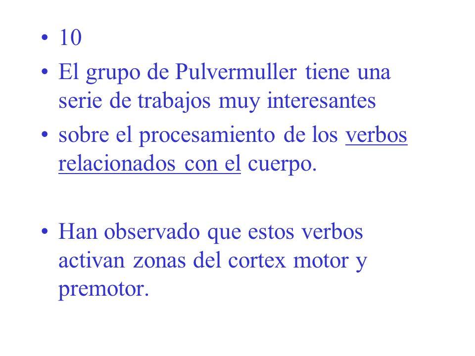 10 El grupo de Pulvermuller tiene una serie de trabajos muy interesantes sobre el procesamiento de los verbos relacionados con el cuerpo.