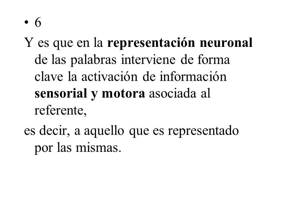 6 Y es que en la representación neuronal de las palabras interviene de forma clave la activación de información sensorial y motora asociada al referente, es decir, a aquello que es representado por las mismas.