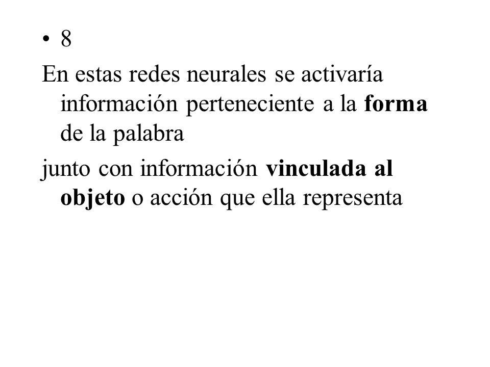 8 En estas redes neurales se activaría información perteneciente a la forma de la palabra junto con información vinculada al objeto o acción que ella representa