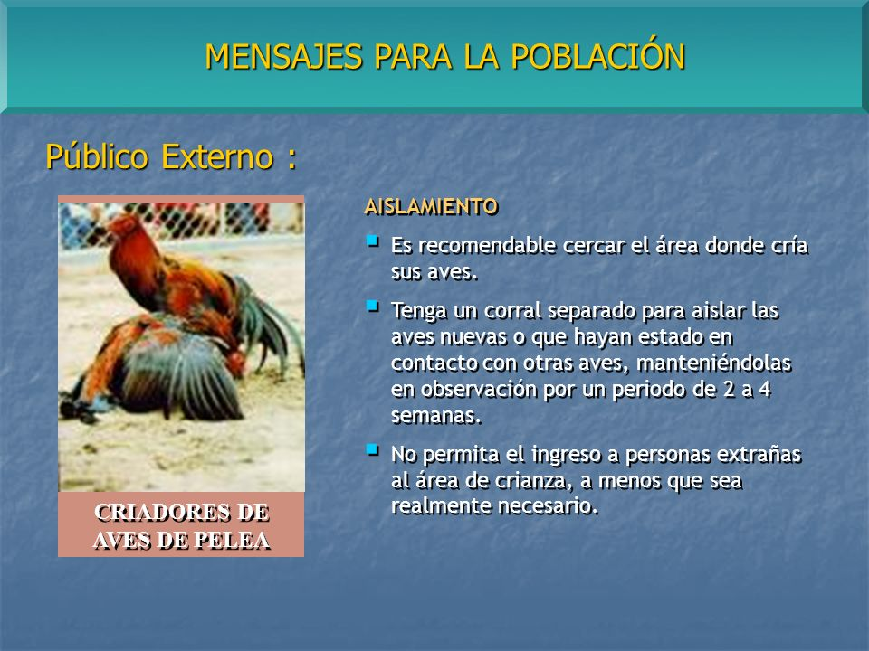 MENSAJES PARA LA POBLACIÓN Público Externo : AISLAMIENTO Es recomendable cercar el área donde cría sus aves.