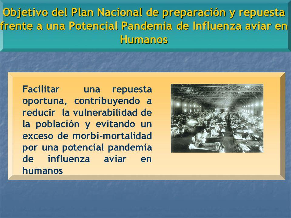 Objetivo del Plan Nacional de preparación y repuesta frente a una Potencial Pandemia de Influenza aviar en Humanos Facilitar una repuesta oportuna, contribuyendo a reducir la vulnerabilidad de la población y evitando un exceso de morbi-mortalidad por una potencial pandemia de influenza aviar en humanos