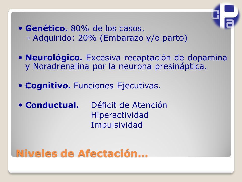 Niveles de Afectación… Genético.80% de los casos.