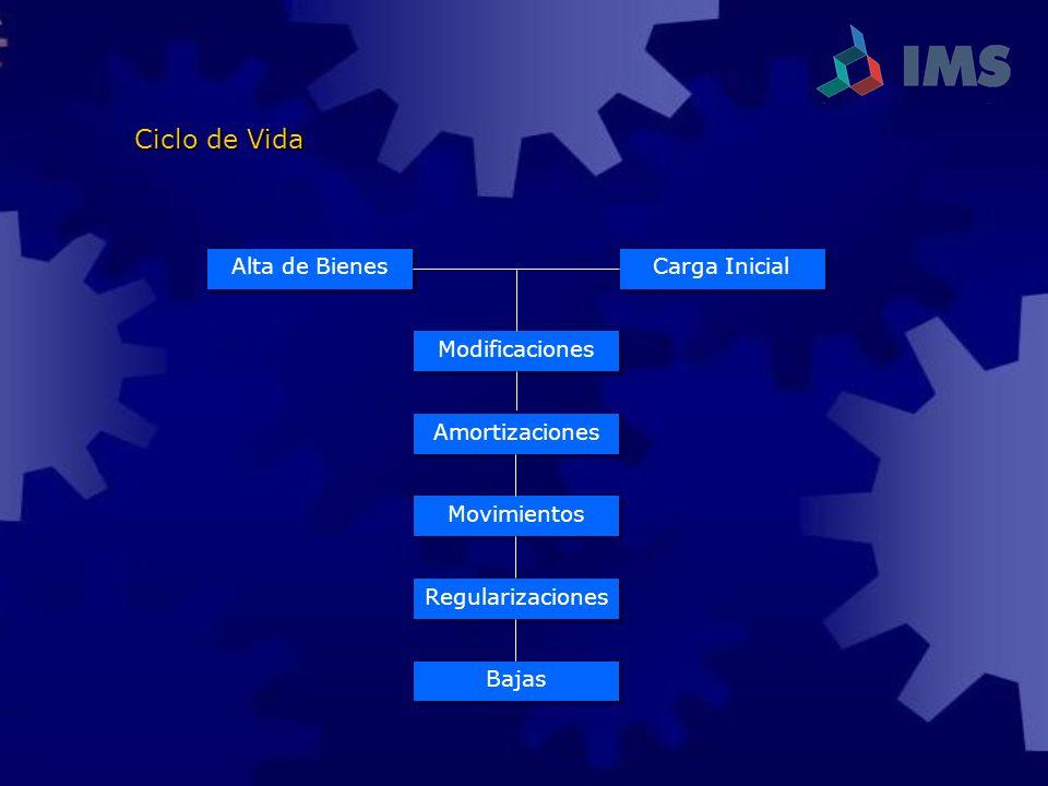 Ciclo de Vida Carga Inicial Alta de Bienes Modificaciones Amortizaciones Movimientos Regularizaciones Bajas
