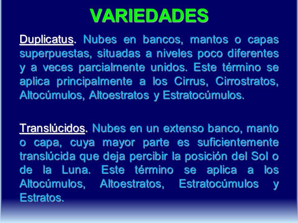 VARIEDADES Duplicatus.