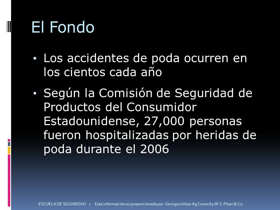 El Fondo Los accidentes de poda ocurren en los cientos cada año Según la Comisión de Seguridad de Productos del Consumidor Estadounidense, 27,000 pers