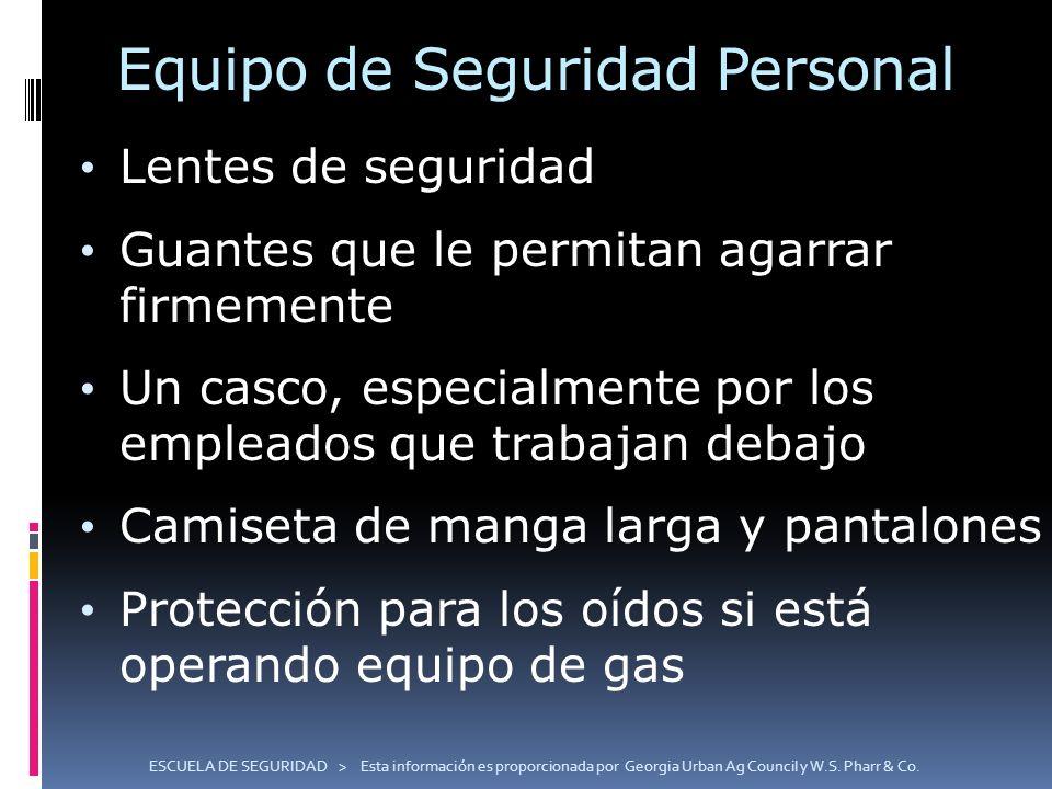 Equipo de Seguridad Personal Lentes de seguridad Guantes que le permitan agarrar firmemente Un casco, especialmente por los empleados que trabajan deb