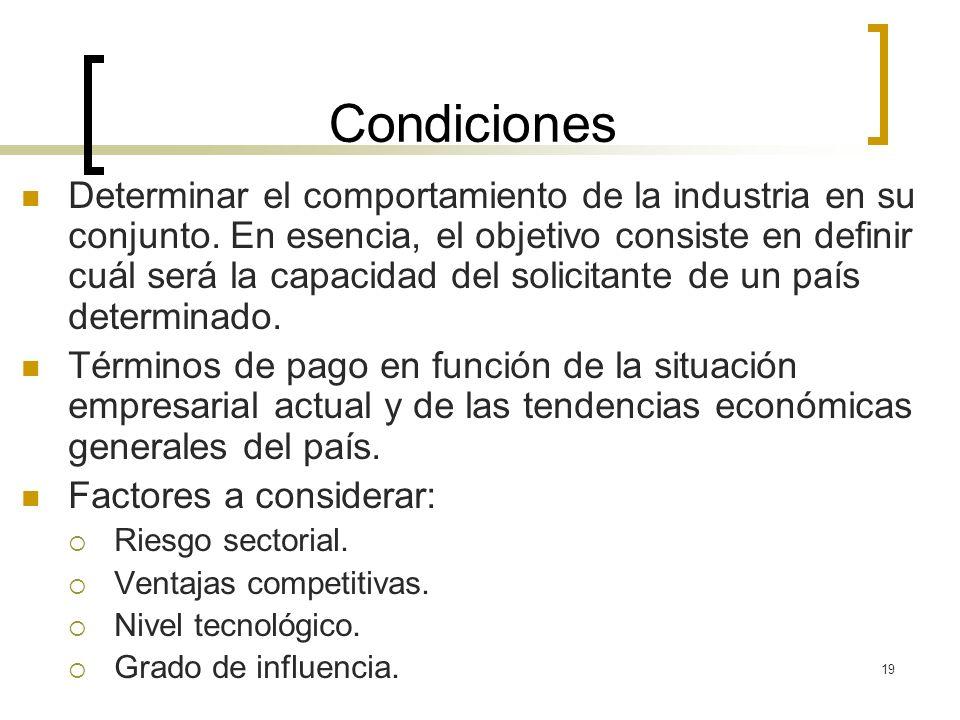 19 Condiciones Determinar el comportamiento de la industria en su conjunto. En esencia, el objetivo consiste en definir cuál será la capacidad del sol