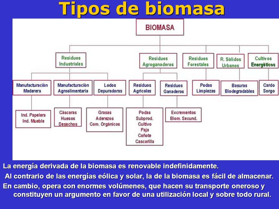 Tipos de biomasa La energía derivada de la biomasa es renovable indefinidamente. Al contrario de las energías eólica y solar, la de la biomasa es fáci