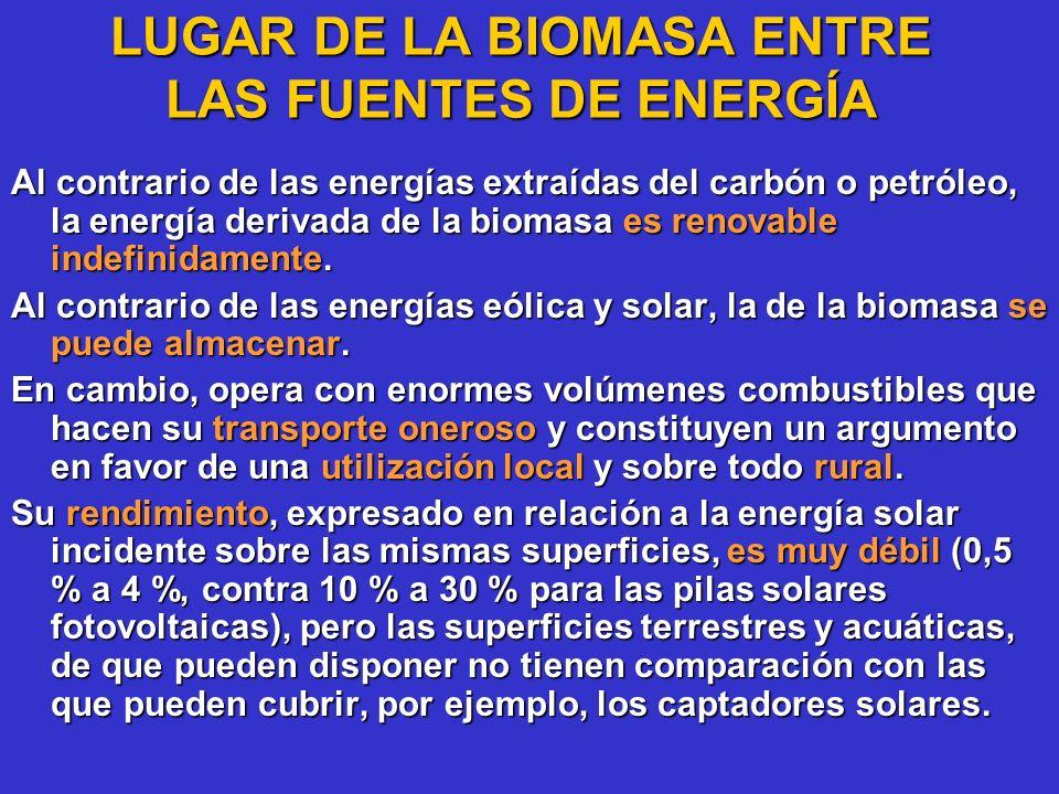 LUGAR DE LA BIOMASA ENTRE LAS FUENTES DE ENERGÍA Al contrario de las energías extraídas del carbón o petróleo, la energía derivada de la biomasa es re