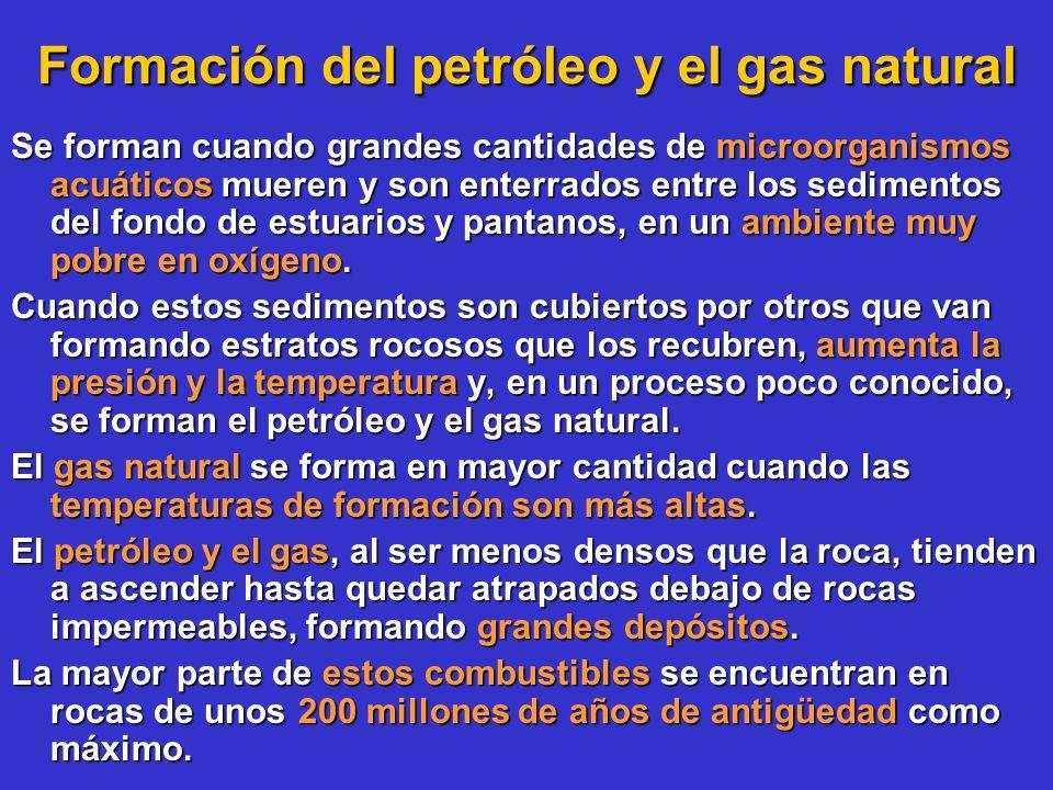 Formación del petróleo y el gas natural Se forman cuando grandes cantidades de microorganismos acuáticos mueren y son enterrados entre los sedimentos