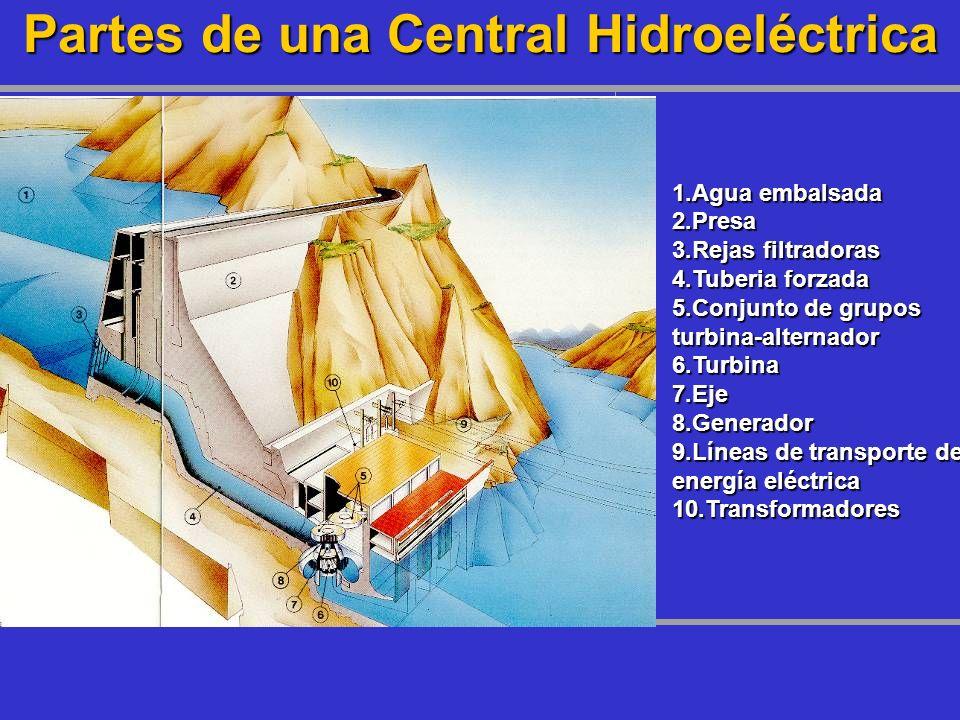 Partes de una Central Hidroeléctrica 1.Agua embalsada 2.Presa 3.Rejas filtradoras 4.Tuberia forzada 5.Conjunto de grupos turbina-alternador 6.Turbina