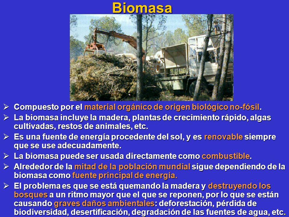 Biomasa Compuesto por el material orgánico de origen biológico no-fósil. Compuesto por el material orgánico de origen biológico no-fósil. La biomasa i