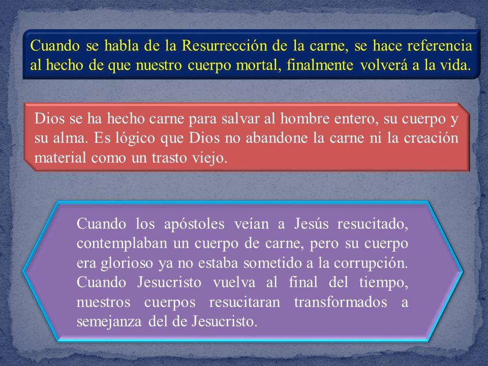 Sabemos por la Revelación, por la enseñanza de Cristo transmitida por los apóstoles, que, tras la muerte, mientras el cuerpo experimenta la corrupción