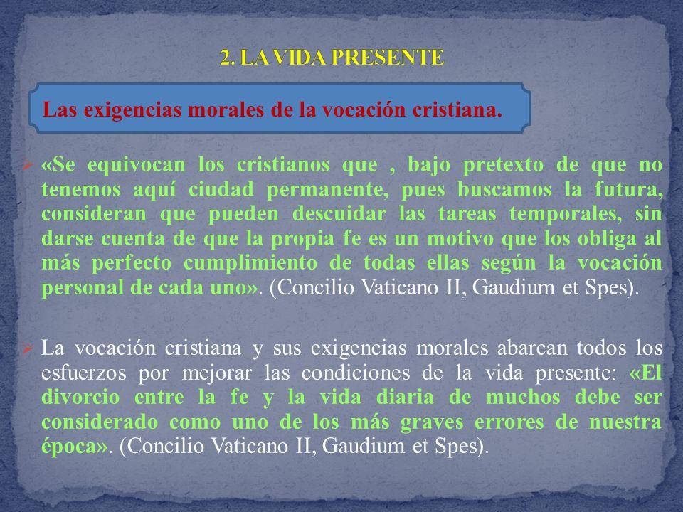 «Caritas in veritate es el principio sobre el que gira la doctrina social de la Iglesia, un principio que adquiere forma operativa en criterios orientadores de la acción moral.