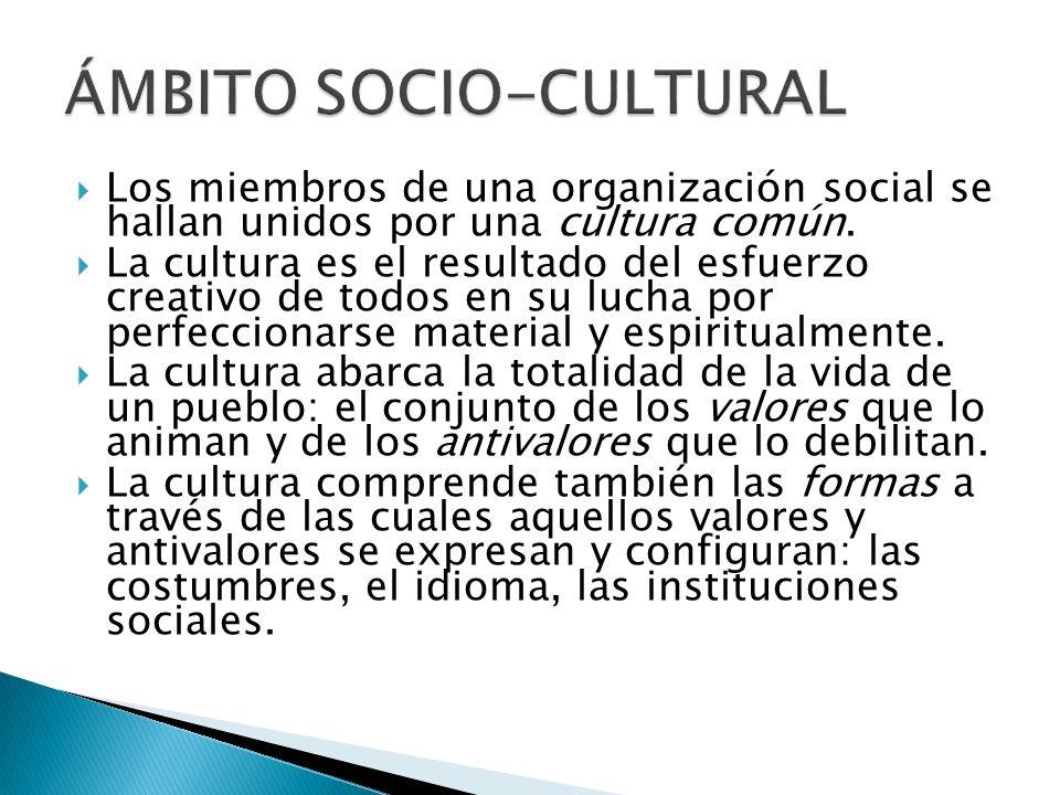 Los miembros de una organización social se hallan unidos por una cultura común. La cultura es el resultado del esfuerzo creativo de todos en su lucha