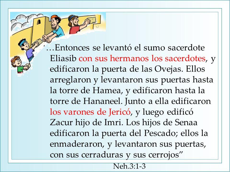 …Entonces se levantó el sumo sacerdote Eliasib con sus hermanos los sacerdotes, y edificaron la puerta de las Ovejas.