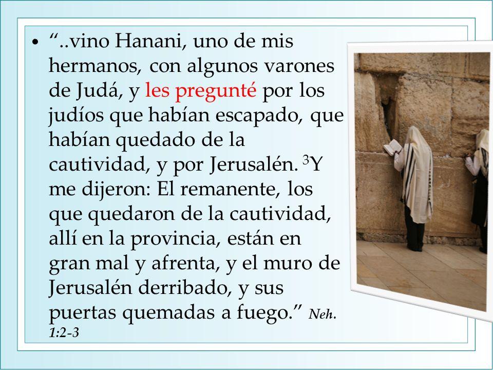 ..vino Hanani, uno de mis hermanos, con algunos varones de Judá, y les pregunté por los judíos que habían escapado, que habían quedado de la cautividad, y por Jerusalén.