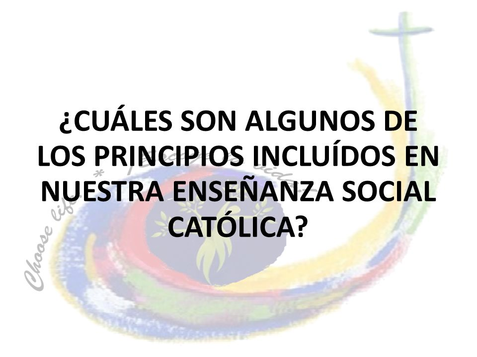 ¿CUÁLES SON ALGUNOS DE LOS PRINCIPIOS INCLUÍDOS EN NUESTRA ENSEÑANZA SOCIAL CATÓLICA?