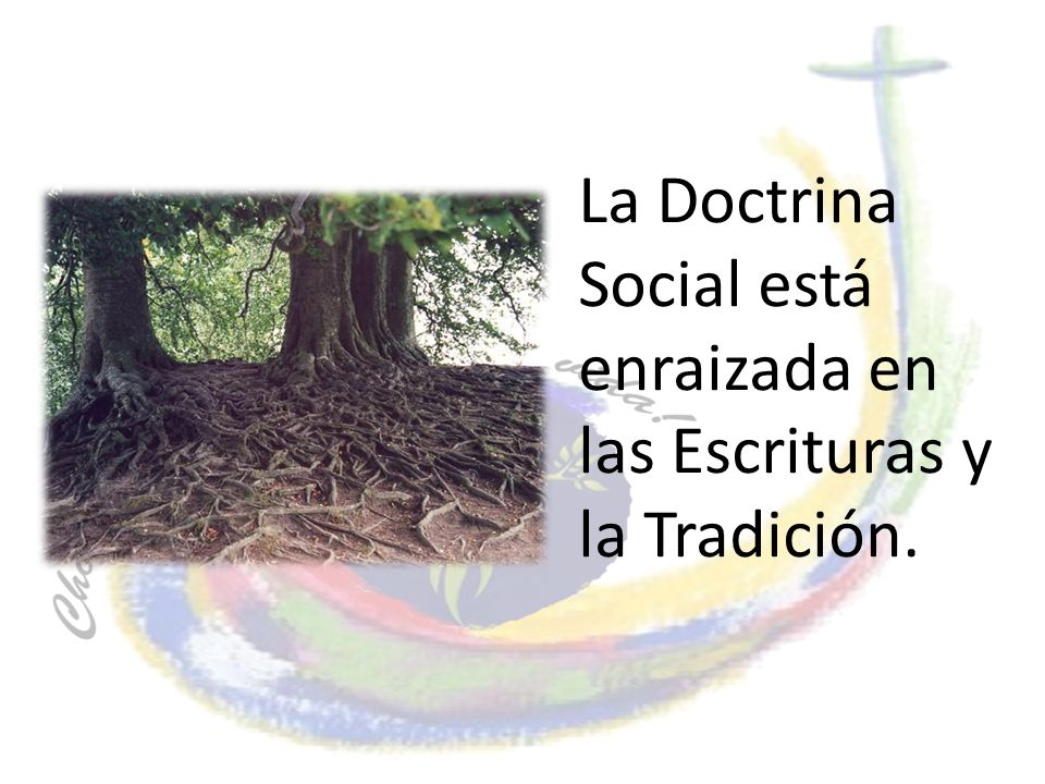 La Doctrina Social está enraizada en las Escrituras y la Tradición.