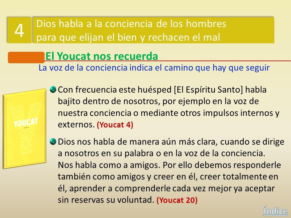 El Youcat nos recuerda Todo hombre está abierto a la Verdad, al Bien y a la Belleza. Oye dentro de sí la voz de la conciencia, que le impulsa hacia el