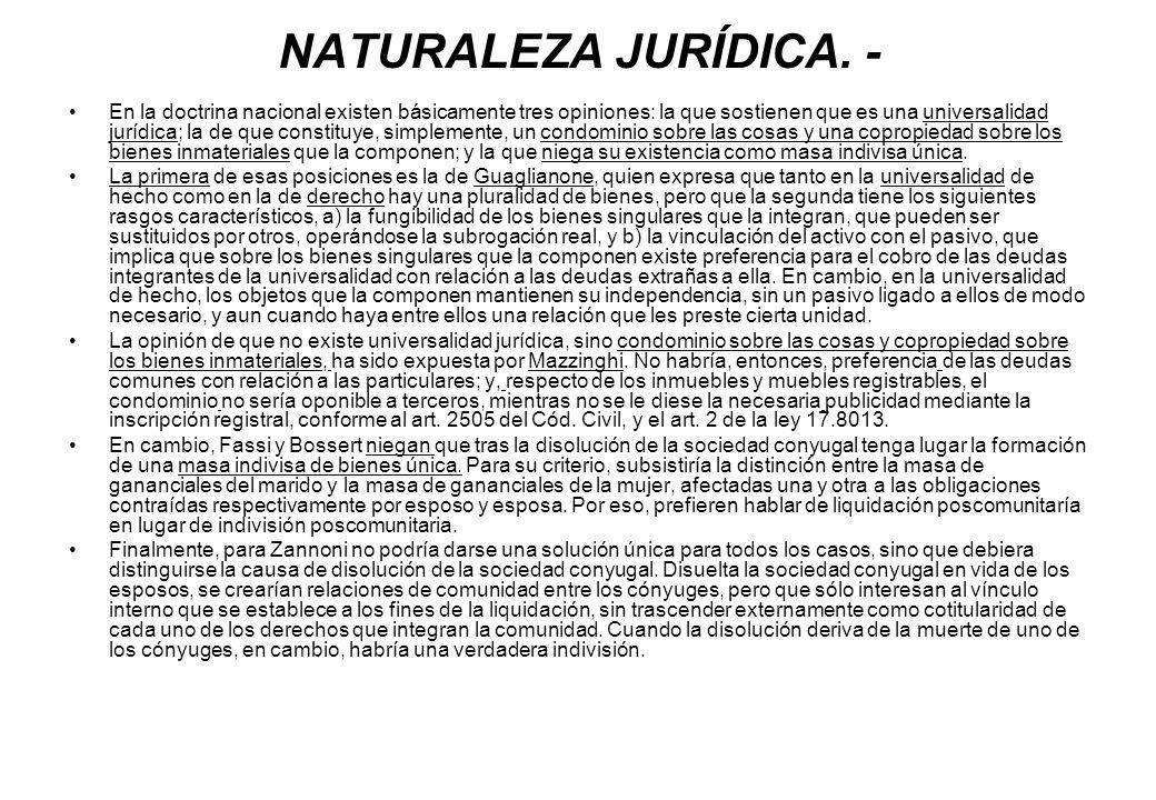 NATURALEZA JURÍDICA. - En la doctrina nacional existen básicamente tres opiniones: la que sostienen que es una universalidad jurídica; la de que const