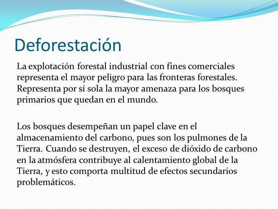 Deforestación La explotación forestal industrial con fines comerciales representa el mayor peligro para las fronteras forestales. Representa por sí so