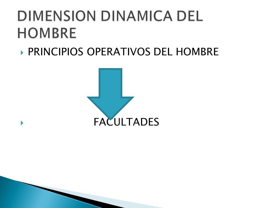 PRINCIPIOS OPERATIVOS DEL HOMBRE FACULTADES