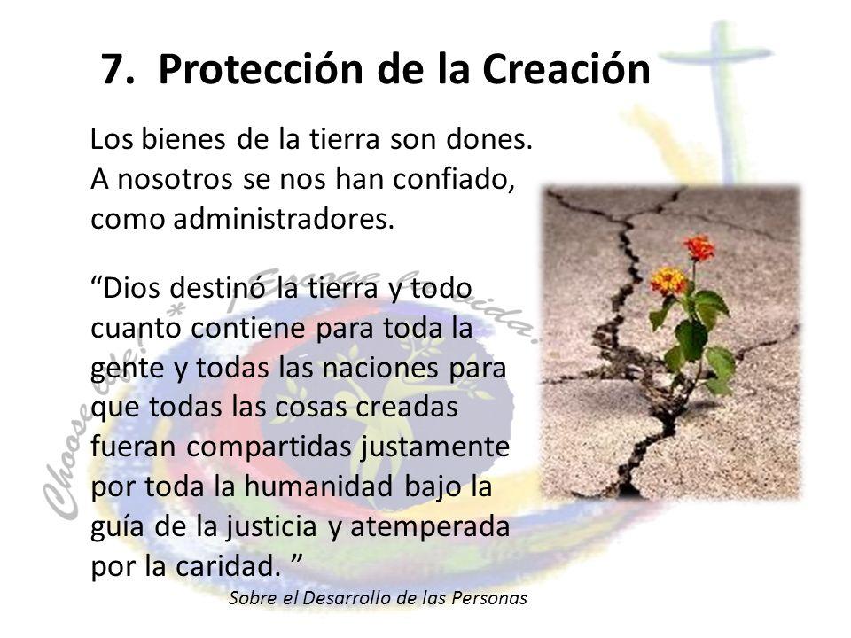 7. Protección de la Creación Los bienes de la tierra son dones. A nosotros se nos han confiado, como administradores. Dios destinó la tierra y todo cu
