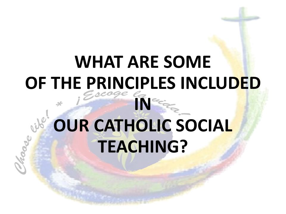 WHAT ARE SOME OF THE PRINCIPLES INCLUDED IN OUR CATHOLIC SOCIAL TEACHING?