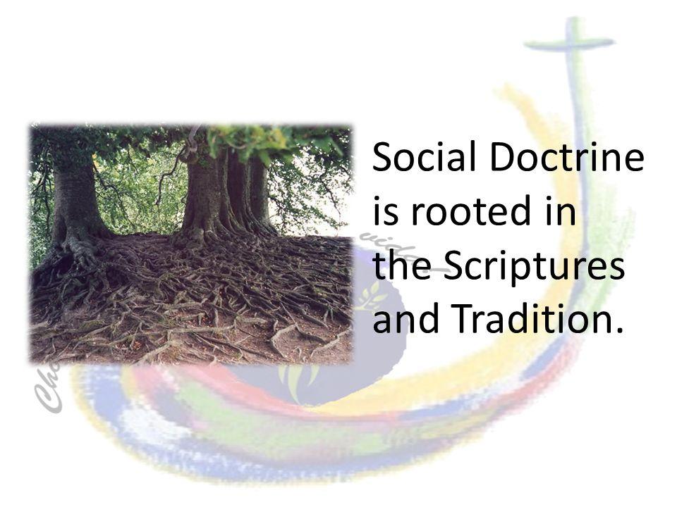 Enseñanza Social Católica Dignidad y Comunidad