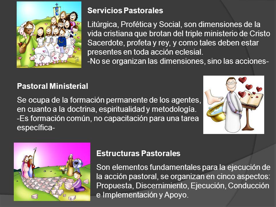 Servicios Pastorales Litúrgica, Profética y Social, son dimensiones de la vida cristiana que brotan del triple ministerio de Cristo Sacerdote, profeta