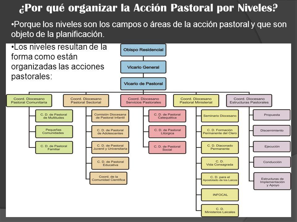 ¿Por qué organizar la Acción Pastoral por Niveles? Los niveles resultan de la forma como están organizadas las acciones pastorales: Porque los niveles