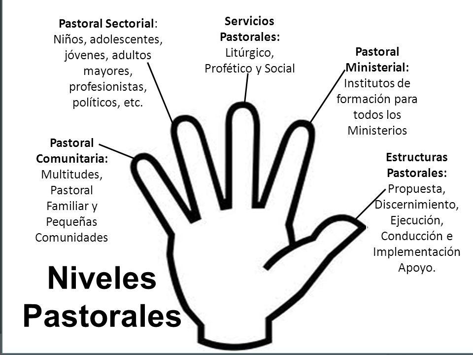 Pastoral Sectorial: Niños, adolescentes, jóvenes, adultos mayores, profesionistas, políticos, etc. Pastoral Comunitaria: Multitudes, Pastoral Familiar