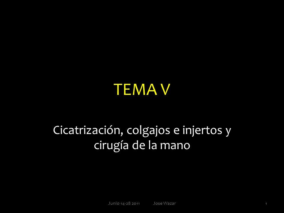 Temas, subtemas e ítems Generalidades Cicatrización: fases Ulceras Colgajos e injertos Cirugía de la mano 2Junio 14-28 2011 Jose Wazar
