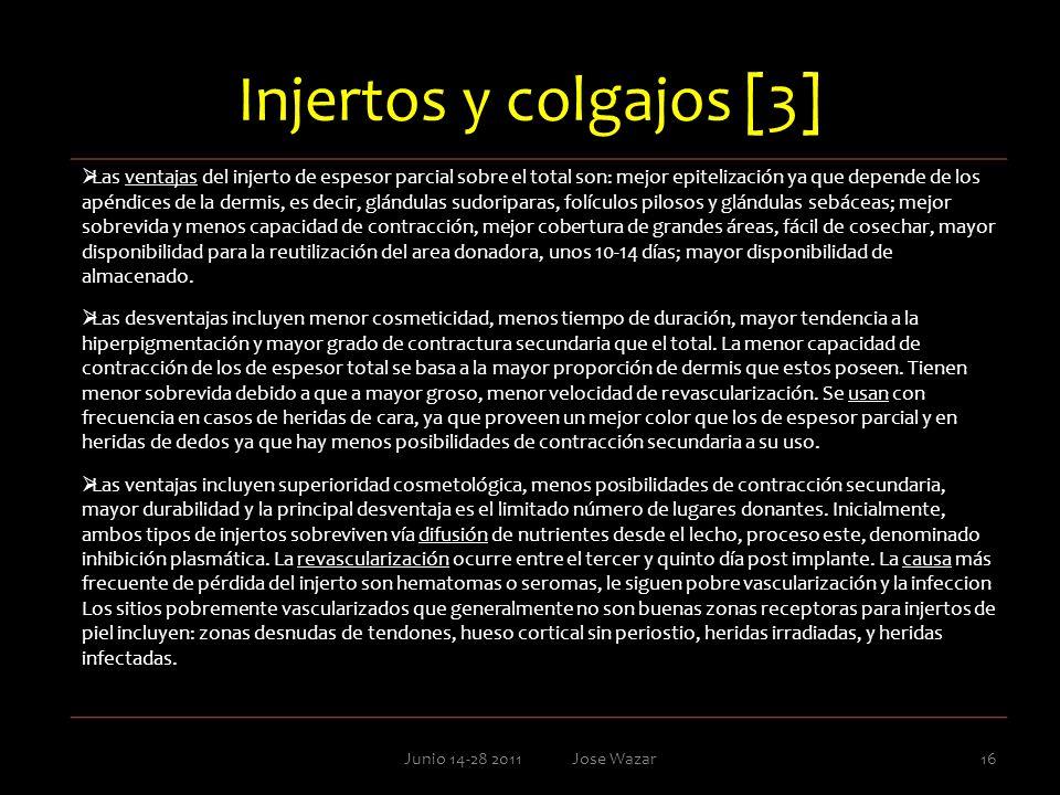 Injertos y colgajos [3] Junio 14-28 2011 Jose Wazar16 Las ventajas del injerto de espesor parcial sobre el total son: mejor epitelización ya que depen