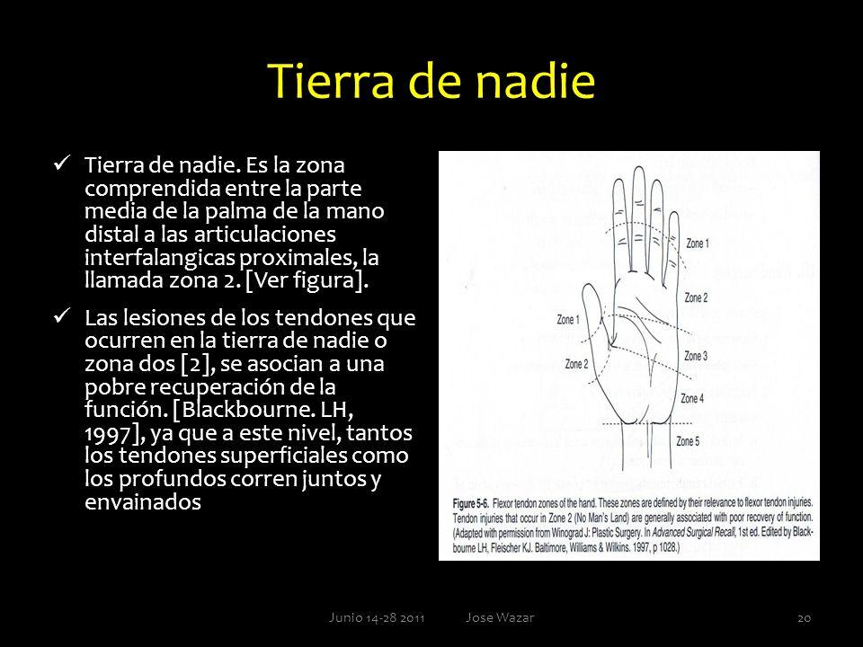 Tierra de nadie Tierra de nadie. Es la zona comprendida entre la parte media de la palma de la mano distal a las articulaciones interfalangicas proxim
