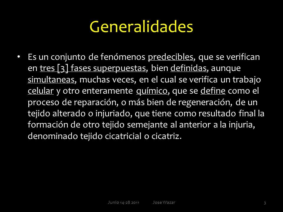 Generalidades Es un conjunto de fenómenos predecibles, que se verifican en tres [3] fases superpuestas, bien definidas, aunque simultaneas, muchas vec