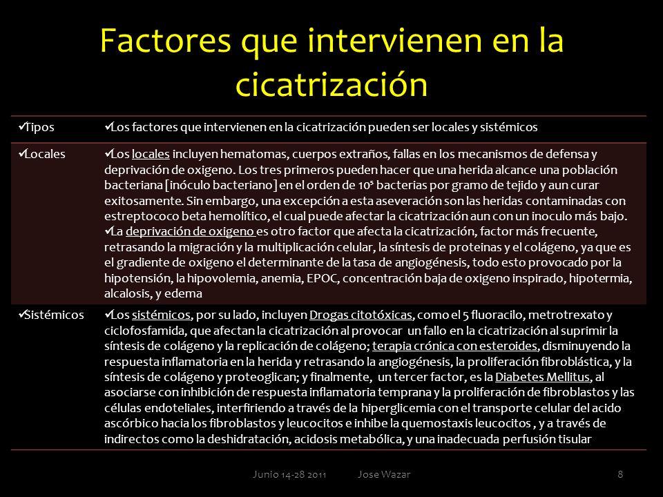 Factores que intervienen en la cicatrización Tipos Los factores que intervienen en la cicatrización pueden ser locales y sistémicos Locales Los locale